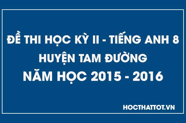 de-kiem-tra-hoc-ky-2-tieng-anh-9-huyen-tam-duong-2015-2016