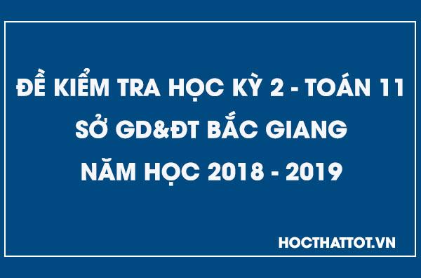 de-kiem-tra-hoc-ky-2-toan-11-nam-2018-2019-bac-giang