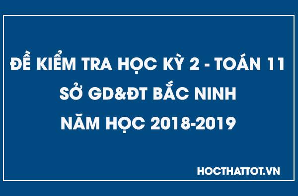 de-kiem-tra-hoc-ky-2-toan-11-nam-2018-2019-bac-ninh