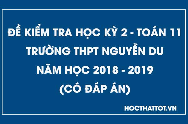 de-kiem-tra-hoc-ky-2-toan-11-nam-2018-2019-nguyen-du