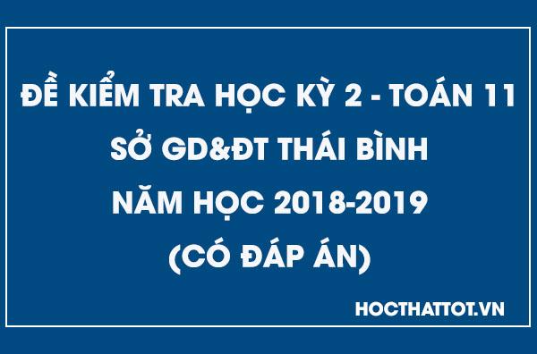 de-kiem-tra-hoc-ky-2-toan-11-nam-2018-2019-thai-binh