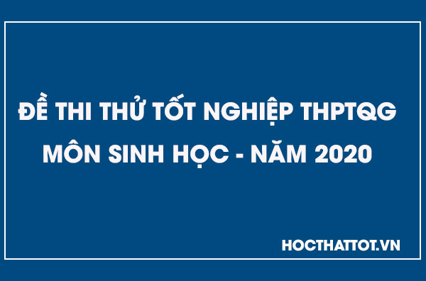 de-thi-thu-thptqg-mon-sinh-nam-2020