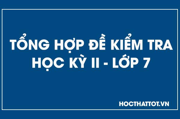 tong-hop-de-kiem-tra-hoc-ky-ii-lop-7