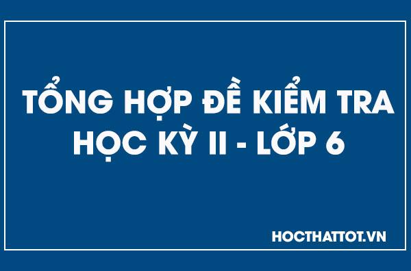 tong-hop-de-kiem-tra-hoc-ky-ii-lop6