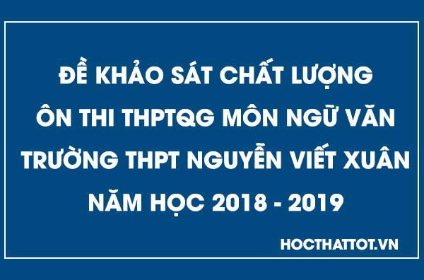 de-khao-sat-chat-luong-on-thi-thptqg-mon-ngu-van-thpt-nguyen-viet-xuan-nam-2019